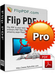 PDF to Flash Flip Book Professional