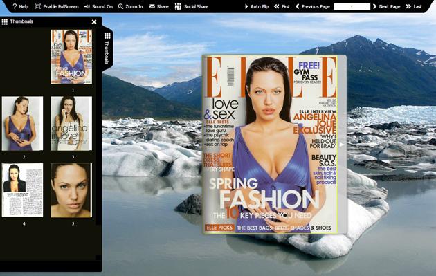 Flash flip book template of Snapshot full screenshot